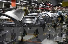 Nhiều nhà máy sản xuất ôtô trên thế giới đóng cửa do thiếu phụ tùng