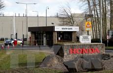 Hãng sản xuất ôtô Honda nâng dự báo lợi nhuận trong cả tài khóa 2019