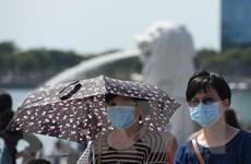 Số ca nhiễm mới và nguy kịch do nCoV tại Singapore tiếp tục tăng