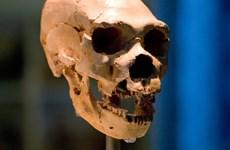 Phát hiện dấu vết gene của 'bộ tộc ma' trong ADN người Tây Phi