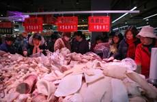 Đài Loan cấm nhập khẩu thịt lợn của Italy vì dịch tả lợn châu Phi