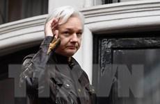 Nhà sáng lập WikiLeaks Julian Assange tìm cách xin tị nạn tại Pháp