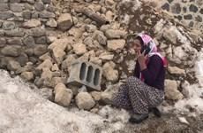 Động đất tại biên giới Iran-Thổ Nhĩ Kỳ, 7 người thiệt mạng