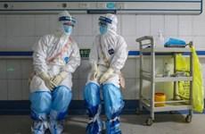 Australia kích hoạt kế hoạch ứng phó khẩn cấp dịch bệnh COVID-19
