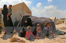 EU đề xuất viện trợ nhân đạo bổ sung 170 triệu euro cho Syria