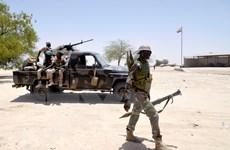 Boko Haram tấn công quân đội ở Đông Nam Niger, 8 người thiệt mạng
