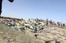 Ethiopia tưởng niệm 1 năm vụ rơi máy bay khiến 157 người chết