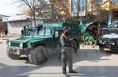 Afghanistan: Một thủ lĩnh Taliban và vệ sỹ thiệt mạng trong vụ nổ bom