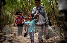UNICEF nhấn mạnh việc bảo vệ trẻ em trong đại dịch COVID-19