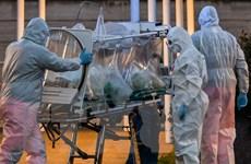 Virus SARS-CoV-2 đã tồn tại ở Italy trước khi bùng phát ở Trung Quốc?