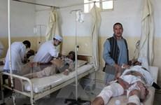 An ninh Afghanistan tịch thu hàng tấn vật liệu nổ tại tỉnh Ghazni
