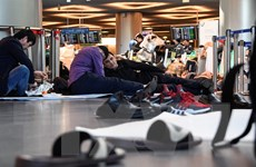 Đưa các công dân Việt Nam bị kẹt ở sân bay quốc tế Moskva về nước