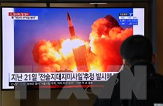 Triều Tiên thử nghiệm hệ thống phóng tên lửa đa nòng ''siêu lớn''