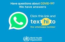 WHO ra mắt chatbot chống tin giả trên ứng dụng tin nhắn WhatsApp