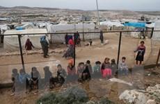 Hàng vạn người tị nạn Syria trở về Idlib sau thỏa thuận ngừng bắn