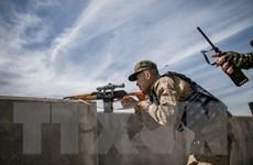 EU lập phái bộ hải quân mới để kiểm soát lệnh cấm vận vũ khí với Libya
