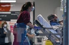 Dự báo đỉnh dịch COVID-19 tại Anh có thể rơi vào lễ Phục sinh