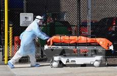 Dịch COVID-19: Mỹ ghi nhận thêm 1.480 ca tử vong mới trong 24 giờ qua