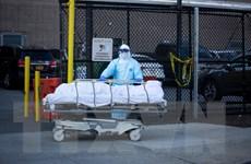 Mỹ tiếp tục ghi nhận gần 2.000 ca tử vong trong 24 giờ