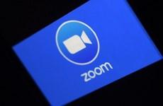 Thượng viện Mỹ đề nghị các nghị sỹ tránh sử dụng ứng dụng Zoom