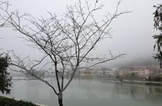 Người dân Lào Cai bất ngờ với đợt lạnh giá bất thường cuối Xuân