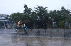 Nông dân Sóc Trăng phấn khởi đón trận mưa ''vàng'' giải khô hạn