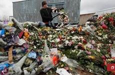 Hàng triệu bông hồng tại Nga bị vứt bỏ mỗi ngày do dịch COVID-19