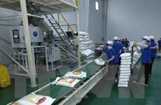 Doanh nghiệp phản ánh về những khó khăn khi xuất khẩu gạo