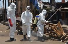 Ba quan chức cấp cao Guinea tử vong do mắc bệnh COVID-19