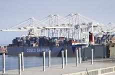 Dịch COVID-19: Mỹ cho phép các nhà nhập khẩu chậm nộp thuế 3 tháng
