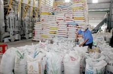 Tổng cục Hải quan hướng dẫn đăng ký tờ khai xuất khẩu gạo nếp
