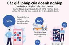 [Infographics] Các doanh nghiệp nỗ lực duy trì sản xuất kinh doanh