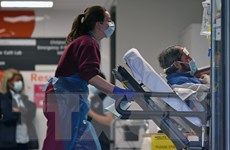 EU nhận định làn sóng lây dịch COVID-19 đầu tiên ở châu Âu đã qua đỉnh