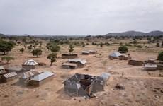 Hơn 40% dân số Nigeria sống trong tình trạng đói nghèo