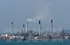 Giá dầu ở châu Á đi lên do nhiều nước bắt đầu dỡ bỏ phong tỏa