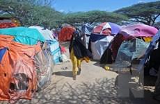 Somalia cùng lúc đối mặt với hàng loạt mối đe dọa thảm khốc