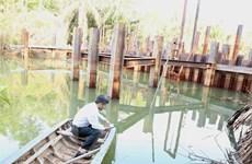 Xâm nhập mặn ở Đồng bằng sông Cửu Long có xu thế giảm dần