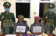 Điện Biên: Hai phụ nữ đổi trâu lấy ma túy rồi vận chuyển qua biên giới