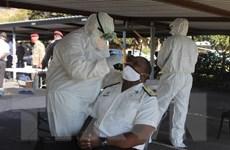 Nam Phi chuẩn bị các hố chôn tập thể cho bệnh nhân COVID-19