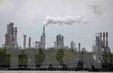 IEA: Đầu tư vào năng lượng giảm mạnh do tác động của dịch COVID-19