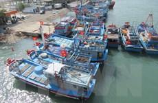 Gần 200 tàu cá ở Ninh Thuận chờ cấp bổ sung hạn ngạch để vươn khơi