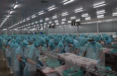 Doanh nghiệp Australia kỳ vọng vào cơ hội kinh doanh tại Việt Nam