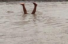 Phú Thọ: Rủ nhau tắm hồ, hai học sinh lớp 6 đuối nước thương tâm