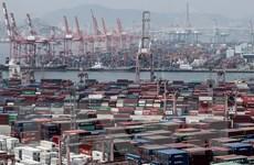 Xuất khẩu của Hàn Quốc tăng nhờ mặt hàng y dược phẩm và chip bán dẫn