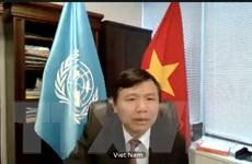 Hội đồng Bảo an Liên hợp quốc nhóm họp về tình hình khu vực Trung Phi
