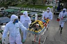 Dịch COVID-19: Số ca tử vong ở Brazil vượt con số 50.000 người