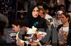 LHQ kêu gọi viện trợ để ngăn chặn một cuộc di cư lớn khác ở Syria