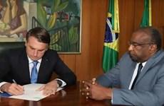 Tân Bộ trưởng Giáo dục Brazil từ chức vì khai man bằng cấp