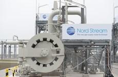 Đức khẳng định mục tiêu hoàn thành dự án Dòng chảy Phương Bắc 2