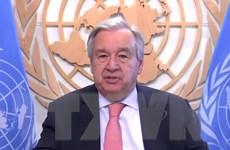 LHQ kêu gọi tất cả các nước tham gia Công ước chống vũ khí sinh học